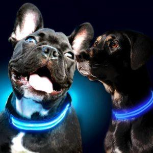 Svítící obojek - modrý L