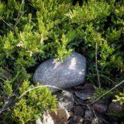 Falešný kámen - hladký