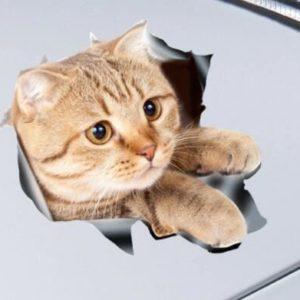 Nálepka - kočka
